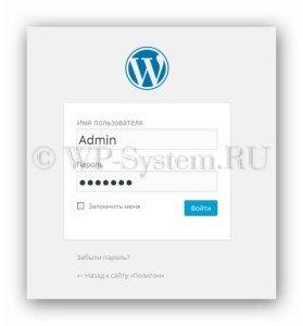 Что такое консоль WordPress