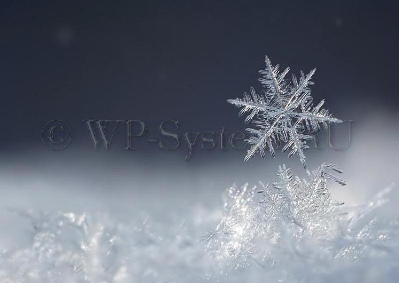 Лёгкий снег в WordPress плагином WP Super Snow