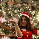 Новогодние плагины для WordPress — снежинки, летающий Санта, гирлянда…